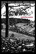 Couverture du livre « Petits oiseaux, grands arbres creux » de Christian Garcin aux éditions Finitude