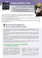 Couverture du livre « Responsabilité civile (2e édition) » de Stephane-Laurent Texier aux éditions Enrick B.