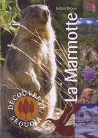 Couverture du livre « La marmotte » de Jacques Drouin aux éditions Sequoia