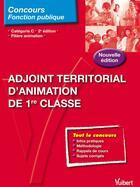 Couverture du livre « Adjoint territorial d'animation de 1re classe ; catégorie C ; filière animation (2e édition) » de Alain Pena aux éditions Vuibert