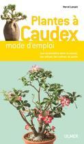Couverture du livre « Plantes à caudex ; mode d'emploi » de Herve Lenain aux éditions Eugen Ulmer