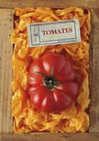 Couverture du livre « Tomates » de Serge Schall aux éditions Plume De Carotte