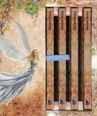 Couverture du livre « La petite bibliothèque du merveilleux » de Brasey Edouard aux éditions Pre Aux Clercs