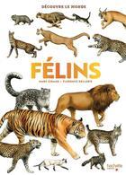 Couverture du livre « Félins » de Giraud/Dellerie aux éditions Hachette Enfants