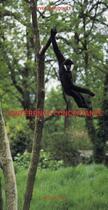 Couverture du livre « Conférence concertante » de Yves Chaudouet aux éditions Actes Sud