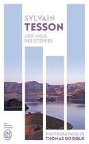 Couverture du livre « L'or noir des steppes - voyages aux sources de l'energie » de Sylvain Tesson aux éditions J'ai Lu
