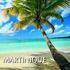 Couverture du livre « Martinique » de Philippe Poux et V Formica et D Poux aux éditions Grand Sud