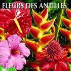 Couverture du livre « Fleurs des Antilles » de Philippe Poux aux éditions Grand Sud
