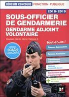 Couverture du livre « Réussite concours ; sous-officier de gendarmerie / gendarme adjoint volontaire » de Philippe Alban et Rosa Luthi aux éditions Foucher