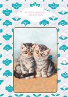 Couverture du livre « Le petit livre des chatons » de Dominique Foufelle aux éditions Papier Cadeau