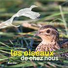 Couverture du livre « Les oiseaux de chez nous (2e édition) » de Andre Burnel aux éditions Lannoo