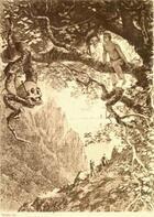 Couverture du livre « Le Scarabée d'or » de Edgar Allan Poe aux éditions